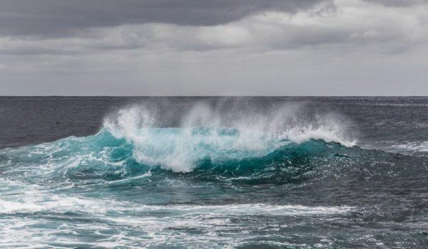 oceanliteracyitalia-14